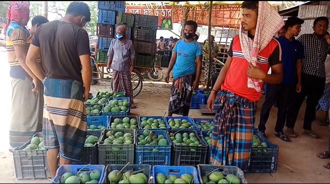 শার্শায় ইজারা বহির্ভূত ফলের বাজার, সরকার হারাচ্ছে কোটি টাকার রাজস্ব আয়