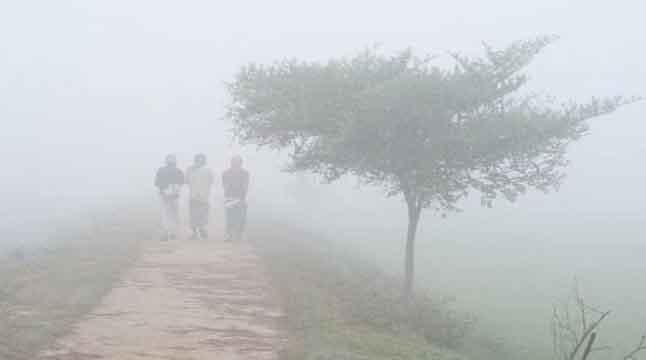 দেশের সর্বনিম্ন তাপমাত্রা নওগাঁয়