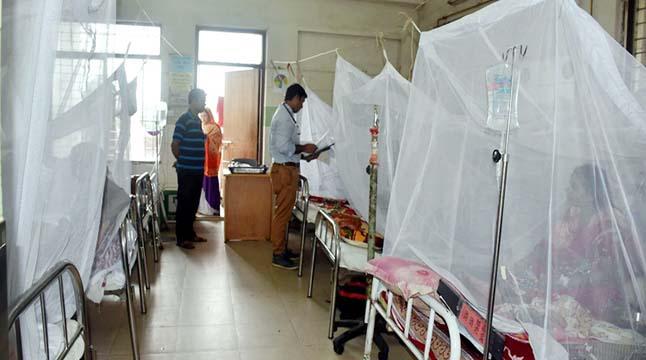 ডেঙ্গু আক্রান্ত হয়ে ৮৬ রোগী হাসপাতালে