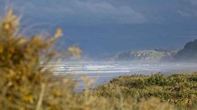 নিউজিল্যান্ডে ৭.২ মাত্রার ভূমিকম্পের পর সুনামি সতর্কতা